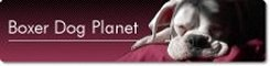 Boxer Dog Planet Logo