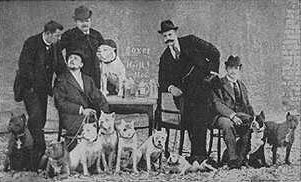 Deutscher Boxer Club 29 March 1896