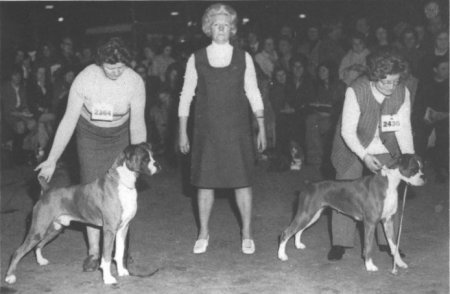 Crufts 1972 - CH Seefeld Picasso & Coperscope Wynbok Sophia