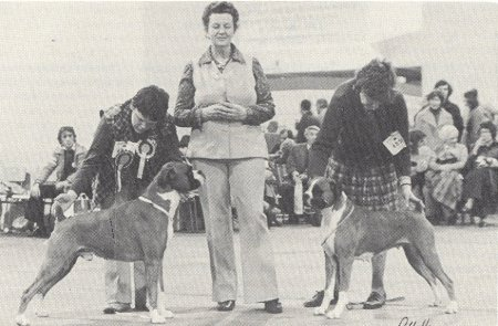 Crufts 1979 - Taken from SWBC Blue Book '79