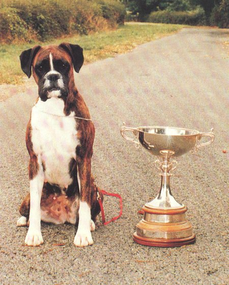 Crufts 1990 BOB - Faerdorn With Love to Shiloh - with Trophy