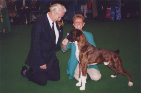 Crufts 1996 - Boxer BOB - CH Blueprint Beern Skittles at Walkon (AUST IMP)